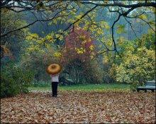 Осень в парке-2 / Осень в городском дендрариию Моросит мелкий осенний дождик.