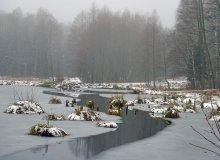 Дыхание зимы... / От Барановичей километрах в двадцати есть такое Бобровое озеро. На ЗП хатку бобриную видно, а справа бревнышко ошкуренное... По свежему ледку дорога к хатке пролегла для транспортировки запасов на зиму. Самих бобров не видела... туман был :)