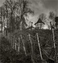 ГРАНИЦА / Саввино-сторожевский монастырь  4 вертикальных кадра  оригинал 26 мегапиксел