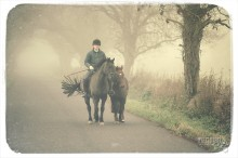 Riding a Horse / Fog in the morning