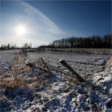 \ / Скоро наступит зима, и весь фотоклуб будет завален зимними снежными пейзажами. Преимущественно леса, конечно ))) Начнем пожалуй.  Первый белорусский снежок и первый настоящий морозец этого года...