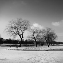 """""""Зима – честное время года."""" / Лошицкий парк..."""