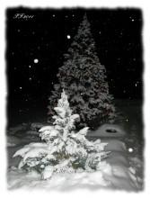 ВСЕХ с Новым 2011! / молодым и начинающим - подъема под сенью состоявшихся авторитетным - признания и покровительста растущим организаторам - многотерпения и мудрости  всем - позитива и звезд с неба!  С НАСТУПАЮЩИМ! :)