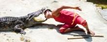 крокодилья ферма / тайланд