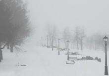 Оторожно туман! / Видимость метров 100-150