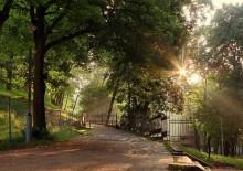 Летнее утро / Первые лучи солнца в парке