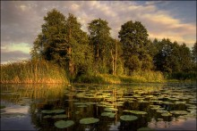 Летняя / Браславские озера