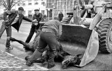 / КАШТАН:  МГНОВЕНИЯ ЖИЗНИ И СМЕРТИ. Столпотворение людей в центре города. На лицах – ужас, сожаление, растерянность… Прямо на асфальте умирает лошадь. Никогда не думал, что смерть животного может вызвать столько эмоций. Но лошадь-то необычная. Это «фишка» нашего городка, любимец публики Каштан.  Более двадцати лет он верой и правдой служил людям: вместе со своим хозяином Францем Людвиковичем Хрептовичем развозил тару и продукты по магазинам, кафе, детским садикам. Горожане привыкли каждый день видеть его на улицах Щучина среди спешащих автомобилей. Каштан не боялся бездушной техники, зато очень любил людей и с благодарностью угощался конфетами. Встретишь по дороге домой Каштана, - и настроение поднимется. Мы даже не заметили, как конь стал неотъемлемой частью нашей провинциальной среды, делал наш городок уютнее и теплее… Столпотворение людей в центре города. Прямо на асфальте умирает Каштан…  Остальное на  http://www.facebook.com/album.php?aid=93907&id=1038627207&l=d8e2d502a9