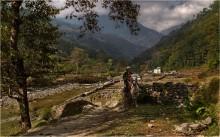 Горная жизнь / непал. местный житель на горной лошадке.