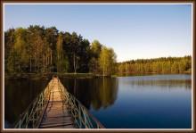Свет на мостике / Природа Подмосковья