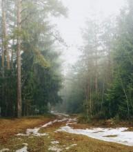 Последний снег... / Весна идет! Весне дорогу!