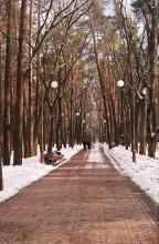 В городском парке / **********