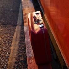 красный чемодан / идешь вот так с мигренью, смотришь, а у красной стены красный чемодан... больно