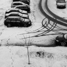 следы зимы / *****