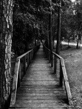 Полоса длинною в мост / Пешеходный мост