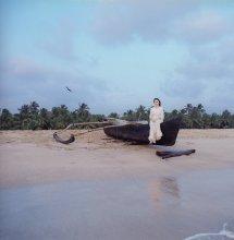 острова / побережье Индии, закат.