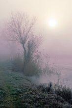 """Как сон чарующий туман / из альбома """"Там где теряется реальность"""""""