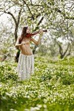 Музыка весны.... / Фотосет со скрипкой...