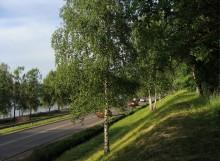 На обочине. / Лето. Вечер. Дорога  рядом с Волгой.