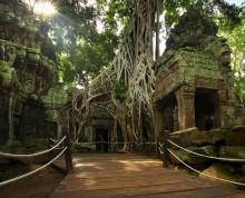 плен / ангкор - камбоджа