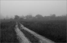 Путь домой... / 7 утра... прогуливаясь по родным просторам...