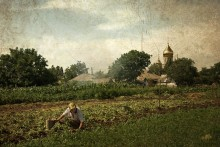 Деревенская зарисовка / Село Ялта, рядом с Мариуполем