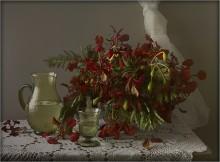/ Цветы в букете наз.Делоникс королевский, или цветы Огненного дерева..