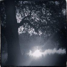 Про солнце в реке / чб пейзаж