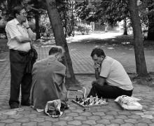 Шахматисты / ******