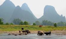 Ли / Декорация...)) Река Li, Guilin, Южный Китай.