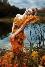 autumn / -------------------