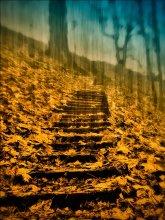 По лестнице / ********