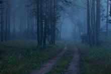 Вечерняя тишина / ........................