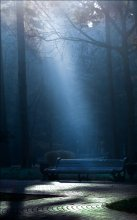 Light on / ........