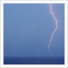 Гроза и Чайки / :) Гроза, застали мы её в Черногории, молния настоящая; единственный кадр из примерно 50, где молния получилась... :) Чаек в это время кружило сотни (может, они не чайки называются...) :) Снимал с рук, f5.0, 1/160, iso200. Было ближе к вечеру... :)