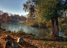 Осенний вид на Виттоловский пруд от Старой Ивы... / Пушкин, Александровский парк. Вид со стороны Грота...