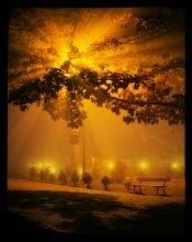 Ночь, улица, фонарь... скамейка... / Б. к.