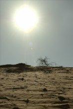 Песочная Дюна / Угол наклона 80', время - Полдень