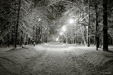 Winter Park / !!!