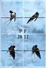 PF 2012 / PF 2012