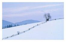 Без названия / Карпаты, зима