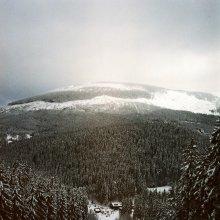 Гора / Не Альпы, конечно)) зато очень уютные, домашние такие горы. А еще, я не люблю елки. Но в таком вот черно-белом варианте они, по-моему, очень симпатичные.