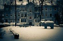 / зимний утренний снежно-пушистый котафот)  ...или Кот, который гуляет сам по себе...