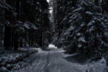 In the dark / ....