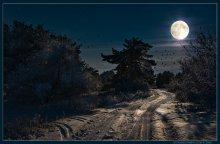 Зимняя сказка / photo: Boris Bushmin Волгоград