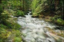 Bulgaria. Smolian. Waterfall Canyon / Городок Смолян в болгарских родопах... Здесь расположен так называемый «каньон водопадов» - туристический пеший маршрут вверх по горной речке, изобилующий десятками маленьких и больших водопадов...