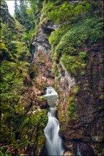 Bulgaria. Trigrad Canyon / Триградское ущелье. Одно из красивейших мест болгарских родоп. Там где ущелье сужается до нескольких десятков метров в ширину, горная река уходит под землю, падая в огромную пещеру.