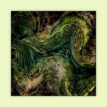 Фактуры подводного мира / Вся серия здесь http://www.facebook.com/media/set/?set=a.3082452389218.2154562.1501107518&type=3&l=5968dd4a30