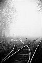 [ Always have a choice in the fog days ] / ...вот проснулся и увидел в окне, и побежал, скорее, скорее, но поезд уже ушёл на встречу весне  ЗЫ...у Бирилки вчера адекватно засиделись ЗЫЫ ...а это только что снято
