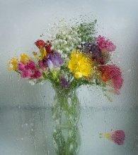 Весенний дождь / Мокрое стекло